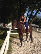 Bricole Reincke with her Westphalian Horse
