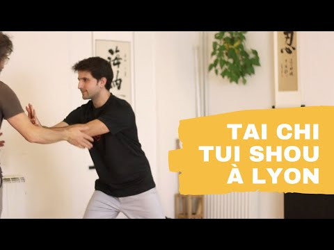 Tai Chi Lyon - Tui Shou