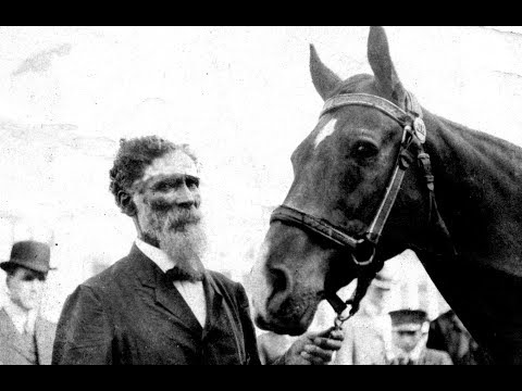 The Smartest Horse That Ever Lived - A True Story