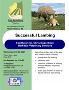 Successful Lambing