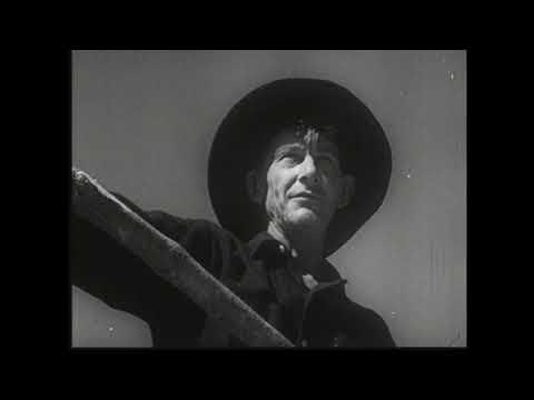 Muddy Waters - Cigar Box Resonator Blues - Watch The Sweep Boys!