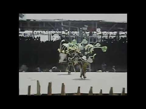 1978 Trinidad Carnival