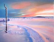 Un lever de soleil sur Les Hautes Fagnes.