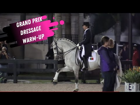 PRE Horse Grand Prix Dressage Freestyle Warm-Up Uncut