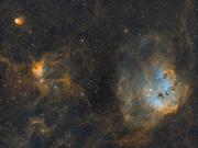 IC410,417 Grodyngel och spindel SHO