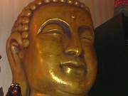 buddha_and_other_statues_00001
