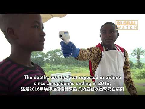 Guinean health minister says four people have already died of Ebola|埃博拉在几内亚复发 科纳克里发现两起疑似病例