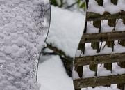 Three Snows
