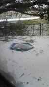 Ice.everywhere.IMG_20210215_085406