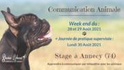 Stage d'initiation à la communication animale