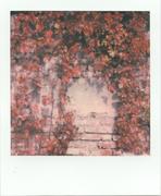 Autunno Rosso