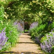 Stitching and the Gardens of Sussex