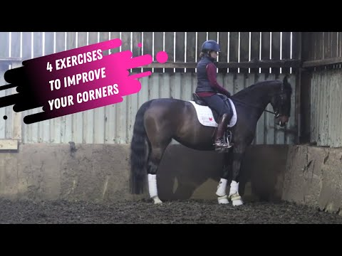4 Exercises To Help Improve Your Corners In Dressage