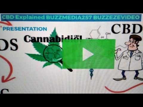 CBD Explained BUZZMEDIA257-BUZZEZEVIDEO