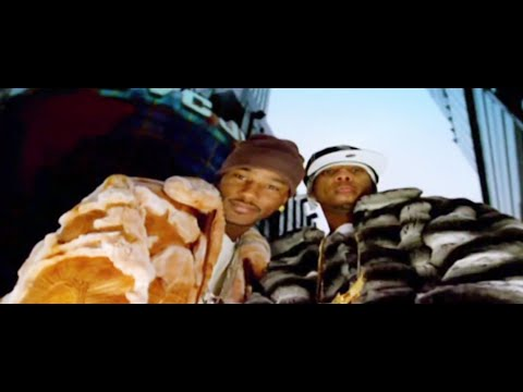 The Diplomats: Juelz Santana - S.A.N.T.A.N.A. (Starring Cam'Ron) (Official HD Music Video)