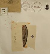 Eduardo Cardoso 210304-6