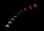2004 Lunar Eclipse Sequence