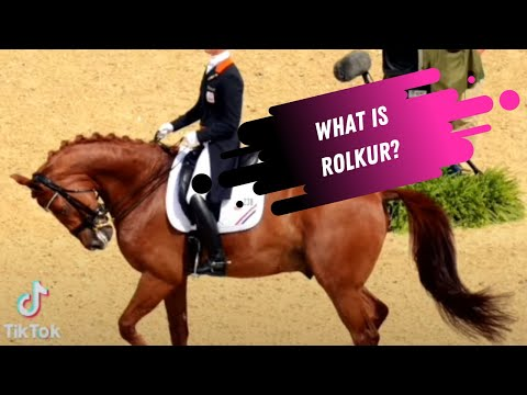 Dressage Contraversies: What Is Rolkur?