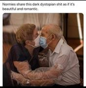 Normies In Love