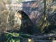 Goldicote Cutting Bridge