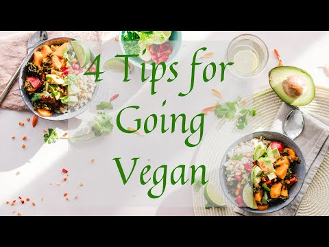 4 Tips for Going Vegan | The Kind Path