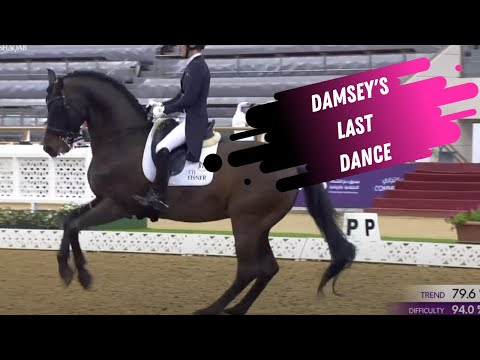 Damsey's Last Dance - The Grand Prix Dressage Stallion Officially Retires