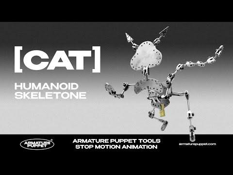 Cat Skeletone - Review