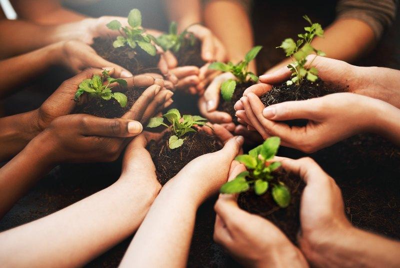 La importancia de la educación ambiental en Colombia