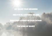 MY NAME TRUE MEANING MELVYN M. LUSTERIO MEANS BRILLIANT LEADER OF EXULTATION OR KING OF GLORY