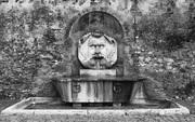 fontana del Mascherone.  Roma