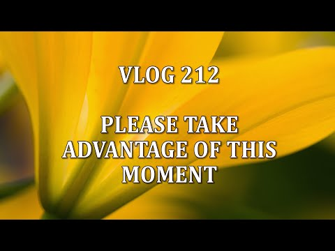VLOG 212 - PLEASE TAKE ADVANTAGE OF THIS MOMENT