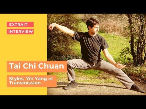 Styles, Yin Yang et transmission du Tai Chi Chuan