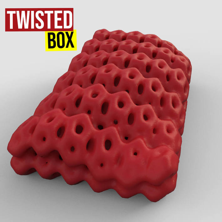 Twisted Box