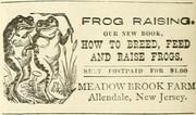 Frog Raising - 1907