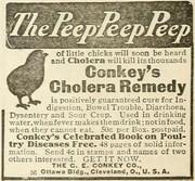 Conkey's Cholera Remedy