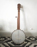 Piccolo/pony scale banjo