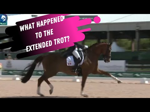 What Happened To The Extended Trot?