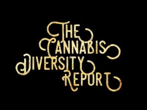 The Cannabis Diversity Report w Tahir Johnson & Jerel Registre Managing Director of the Curio WMBE…