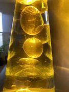 The Honey Pot Today.. Awoken