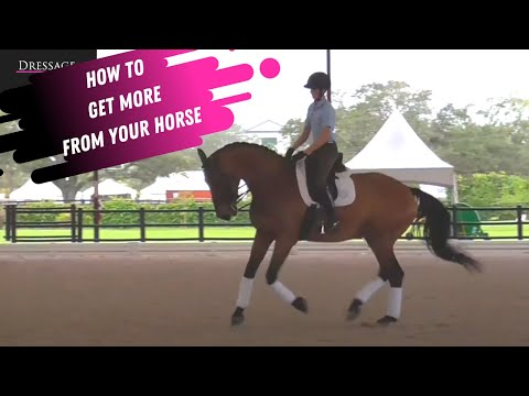 How To Get MORE From Your Horse With Laura Graves