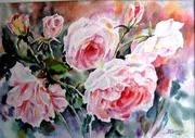 clarté du solleil sur un rosier