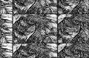 Sequential Woodcut
