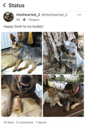 Great Dog!