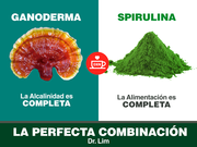 LA-PERFECTA-CONBINACION-DXN