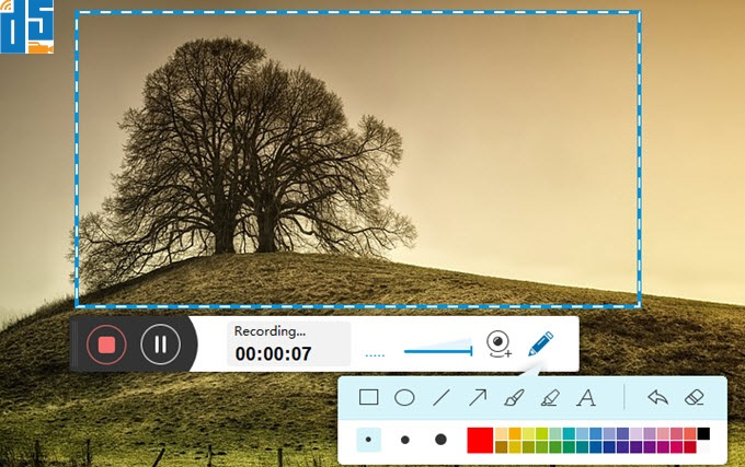 Video and Screen Capture Software