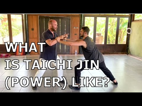 What is Taichi Jin Power Really Like? Sifu Adam Mizner DEMONSTRATES!