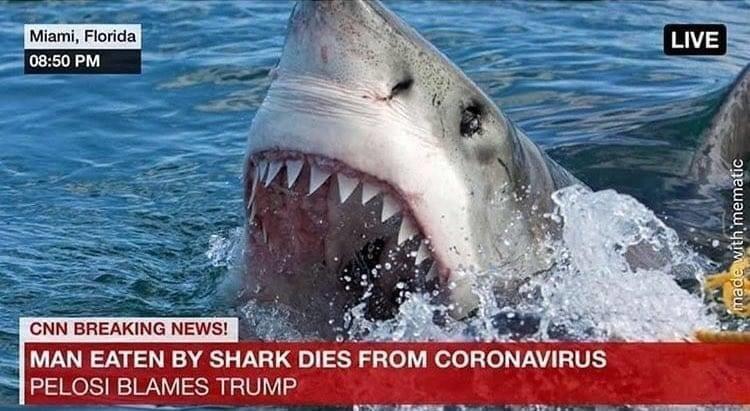 Cornholio Shark Bite