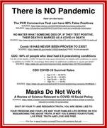 There is No Pandemicv - Masks Don't Work