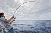Best Telescopic Fishing Rods - Fishinges