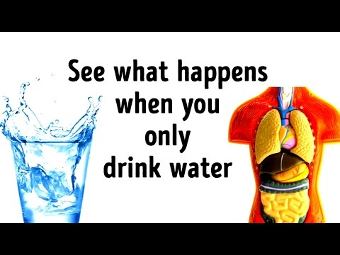 What Would Happen If You Replaced All Drinks with Water?